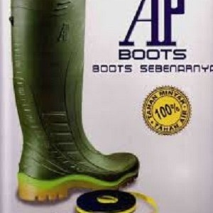 All about AP BOOTS