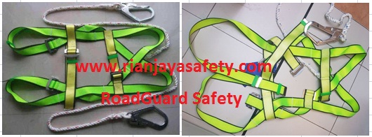 Body Harness (special quality) RoadGuard Safety
