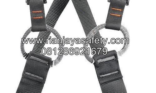 JUAL PETZL SIMBA HARNESS FOR CHILDREN